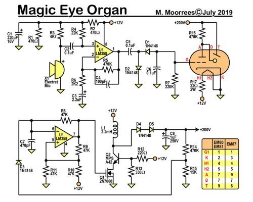 eye_organ